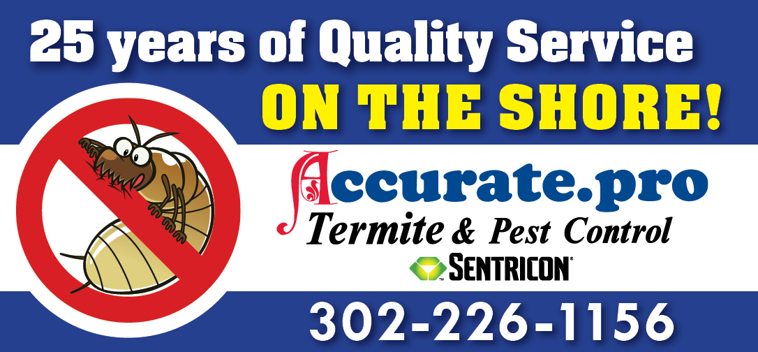 25 years of quality service on the shore banner